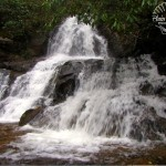 Laurel Falls with watermark