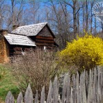Log Cabin watermark