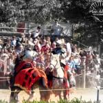 Fighting on horseback with watermark