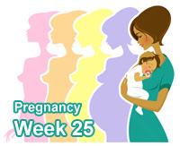Bumpdate: 25 weeks