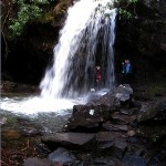 Grotto Falls – Great Smoky Mountains National Park
