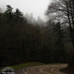 Newfound Gap Road: Great Smoky Mountains National Park