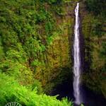 Number 16: Akaka Falls – Big Island
