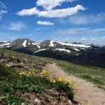 Trail Ridge Road – Rocky Mountain National Park
