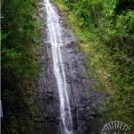 Manoa Falls – Oahu