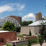 Denver Botanic Gardens: A Beautiful Spot in the City