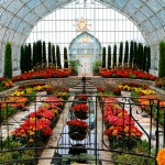 Como Park Conservatory: A Garden to Remember
