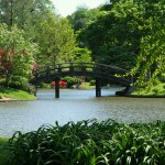 Missouri Botanical Garden: The Best Around