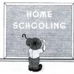 Home Schooling: To do or Not to do that is the Question