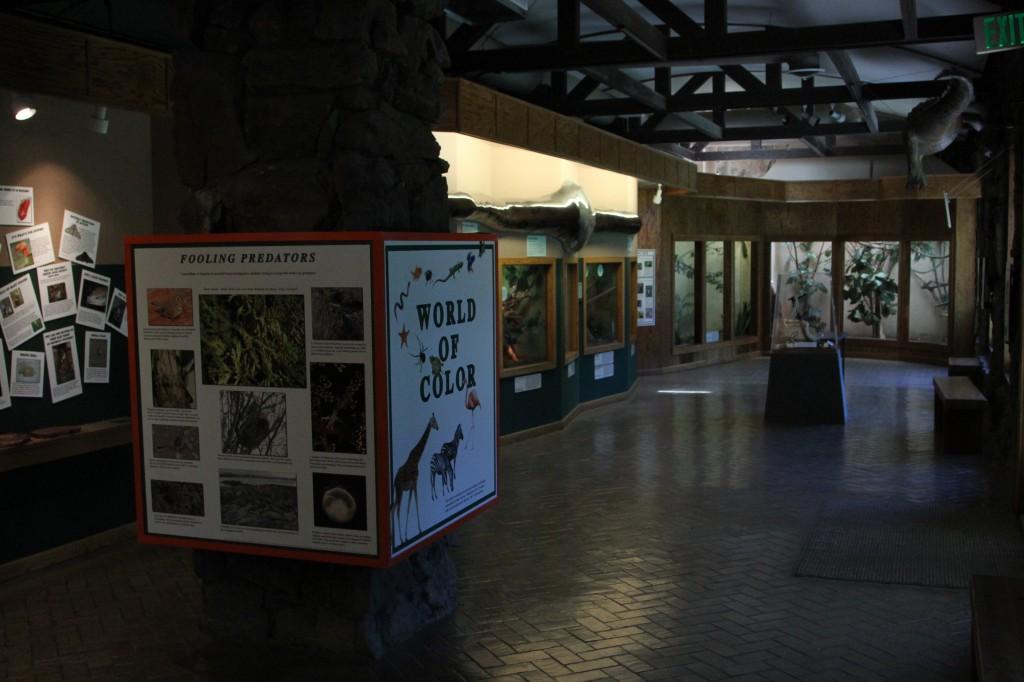 IMG 5906 1024x682 Pueblo Zoo: Small Zoo Big Heart