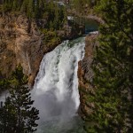 Upper Falls: Yellowstone National Park