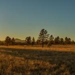 Buffalo Park: Flagstaff