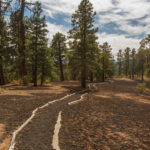 Lennox Crater Trail: Sunset Crater National Monument