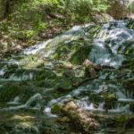 Dunnings Spring Falls
